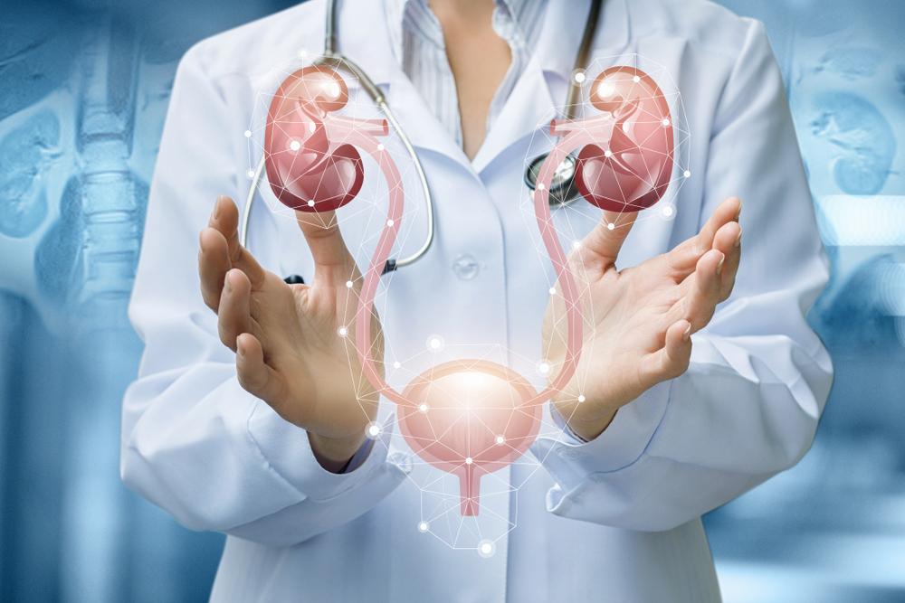 Le infiammazioni alla vescica: cause, sintomi e rimedi 1